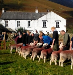 Line up Wasdale